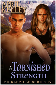 TARNISHED COVER