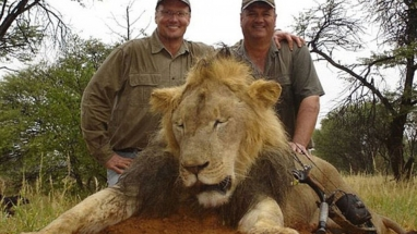 walter with lion